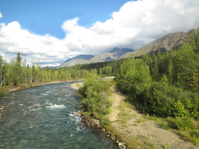 The drive to Denali had amazing scenery almost all the way.
